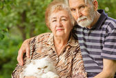 Elderly pair with Persian cat — Stock Photo