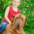 Stok fotoğraf: Girl and mastiff