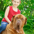 The girl and mastiff - Stok fotoğraf