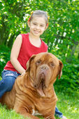 The girl and mastiff — Stock Photo