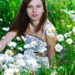 Girl on a meadow — Stock Photo #2587892