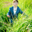 Royalty-Free Stock Photo: Girl among green grass