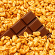 Chocolate in wheat - Stock Photo