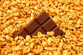 Chocolate in wheat — Stock Photo