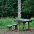Bench And Table From The Trunk — Stock Photo