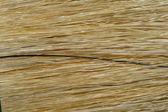 Brush Hair — Stock Photo
