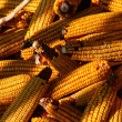 Royalty-Free Stock Photo: Corncob