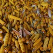 Corncob - Stock Photo