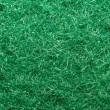 Stock Photo: Green Scouring Fleece