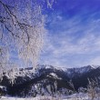 Altai Mountains 1 — Stock Photo