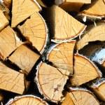 Cracked Logs — Stock Photo #1710089