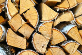 Cracked Logs — Stock Photo
