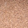 Royalty-Free Stock Photo: Cork board texture for your background