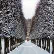 Estate Arhangelskoe near Moscow in Russia — Stock Photo #1881333