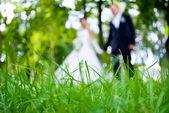 Sylwetki nowożeńcy — Zdjęcie stockowe