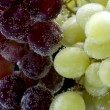 Grapes on black closeup — Stock Photo