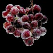 Grapes on black background close up — Stock Photo
