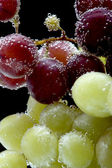 Grapes on black macro — Stock Photo