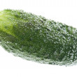 Cucumber in water macro — Stock Photo