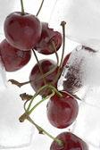 Cherry in the ice — Stock Photo