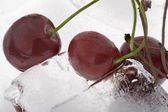 Cherry in ice — Stock Photo