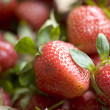 Raw strawberries - Foto Stock