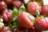 Raw strawberries — Stock Photo