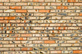 Of-different-colours-bricks — Stock Photo