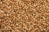 Buckwheat cereals — Stock Photo