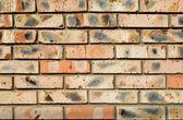 Burnt bricks — Stock Photo