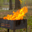 Stock Photo: Brazier
