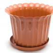 Flowerpot on white — Stock Photo