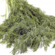 Stock Photo: Dill close up