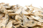 Drying sprat — Stock Photo