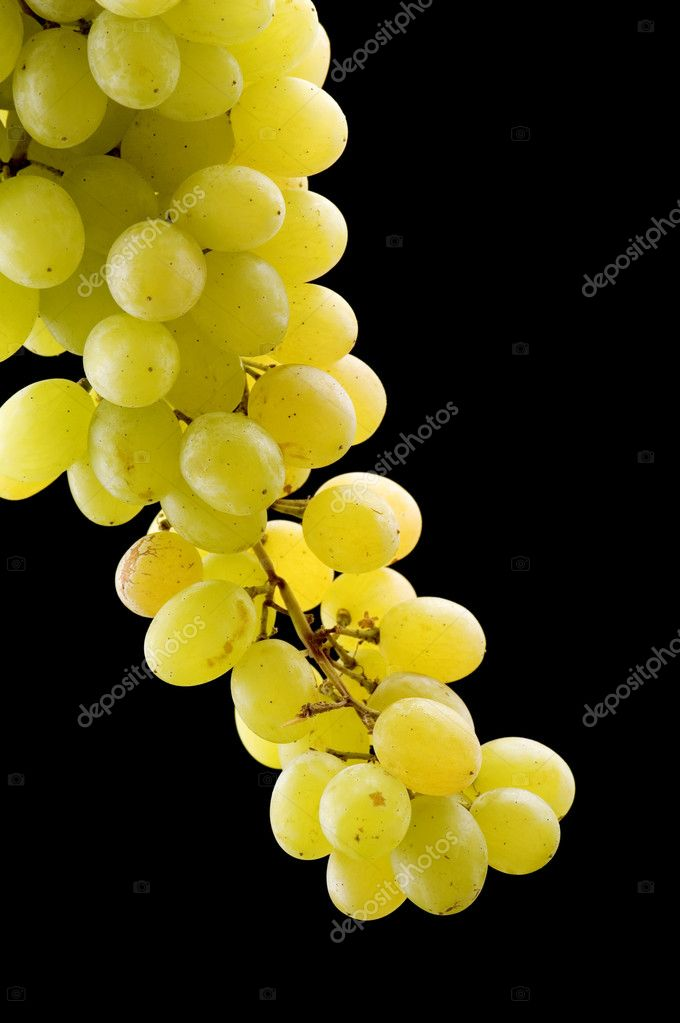 Object on black - food green grapes — Stock Photo #1805204