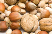 Ořechy makro — Stock fotografie
