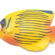 Yellow Fish magnet — Stock Photo
