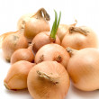 Bulb onion - Stock Photo