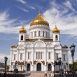 Cathedral of Christ the Savior — Stock Photo #1845529