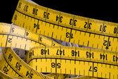 Centimetr makro — Stock fotografie