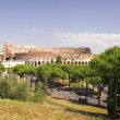 Coliseum in Rome - Stock Photo