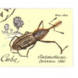 Stock Photo: Colored postage stamp macro