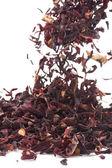 Hibiscus Tea macro — Stock Photo