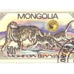 Postage stamp panthera closeup — Stock Photo #1888065