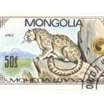 Postage stamp panthera close up — Stock Photo #1888259