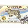 Stock Photo: Postage stamp panthera