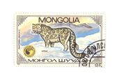 Postage stamp panthera — Stock Photo