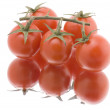 Red tomato on white close up — Stock Photo
