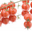Stock Photo: Red tomato on white macro