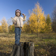 Boy on stub in autumn park — Stock Photo